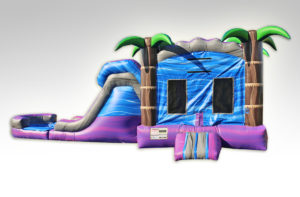 Inflatables Combo WC1019