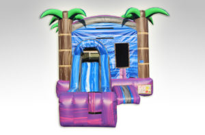 Inflatables Combo WC1026-MiniPurple-_W-D_Stopper_3
