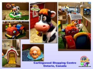 Shopping Center and Retail Installations - Carlingwood-Shopping-Centre-Ontario