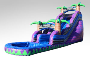 Inflatables Combo WS 1029 Waterslide, Inflatables